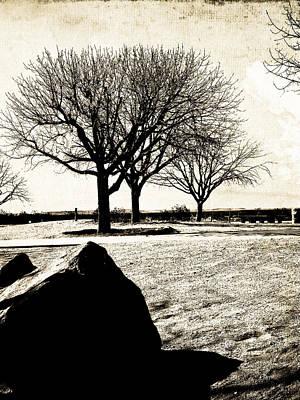 Tres Trees Poster by Gilbert Artiaga