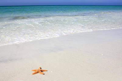 Tropical-beach5 Poster