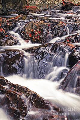 True's Brook Gorge Water Fall Poster by Edward Fielding