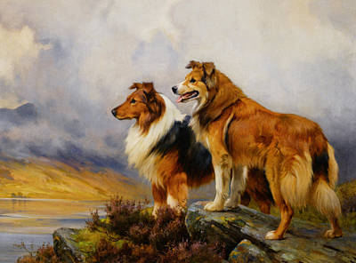Two Collies Above A Lake Poster by Wright Barker