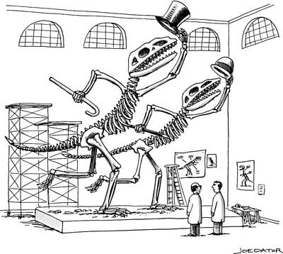 Two Dinosaur Skeletons At A Museum Appear Poster