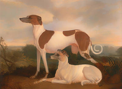 Two Greyhounds In A Landscape Poster by Mountain Dreams
