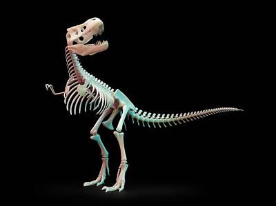 Tyrannosaurus Rex Skeleton Poster by Andrzej Wojcicki