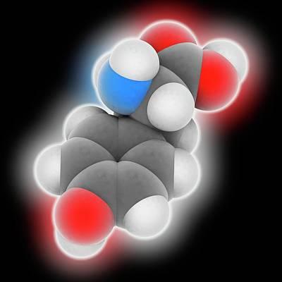 Tyrosine Molecule Poster by Laguna Design