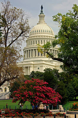 Poster featuring the photograph United States Capitol by Suzanne Stout