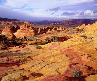 Usa, Arizona, Paria Canyon (large Poster by Jaynes Gallery