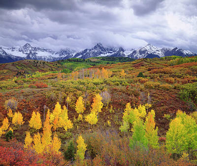 Usa, Colorado, Rocky Mountains, Autumn Poster by Jaynes Gallery
