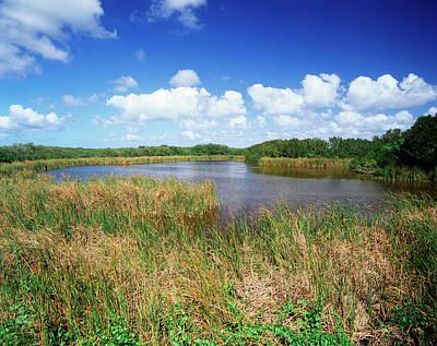 Usa, Florida, Everglades National Park Poster by Adam Jones