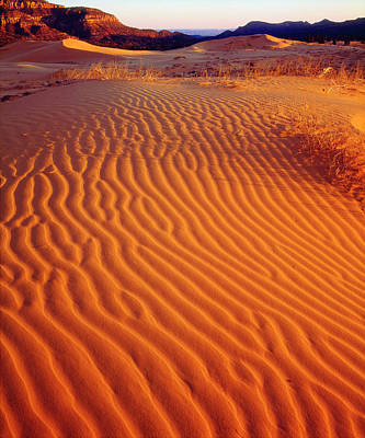 Usa, Utah Coral Pink Sand Dunes Poster by Jaynes Gallery