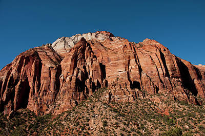 Usa Utah, Great Arch Of Zion In Zion Poster by Lee Foster