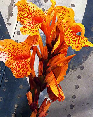 Ventura Flower Poster by Ron Regalado
