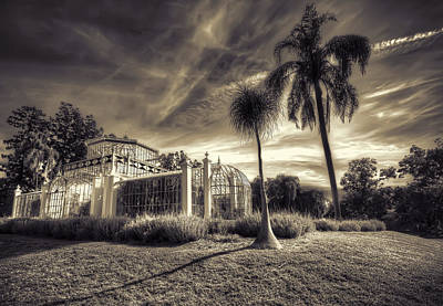 Victorian Palm House Poster by Wayne Sherriff