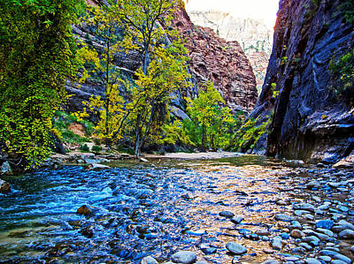 Virgin River In Zion Canyon Narrows In Zion National Park-utah  Poster