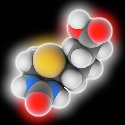 Vitamin B7 Biotin Molecule Poster by Laguna Design