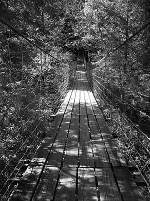 Walk Through Woods Poster