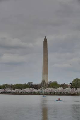Washington Monument - Cherry Blossoms - Washington Dc - 01135 Poster by DC Photographer