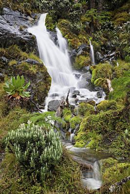 Waterfall At Mount Stanley, Ruwenzori Poster by Martin Zwick