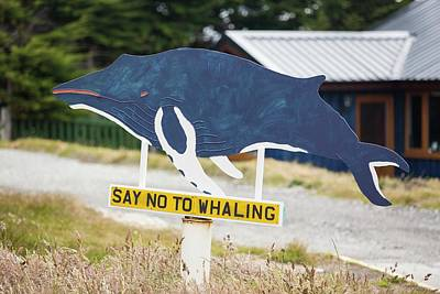 Whaling Museum Poster