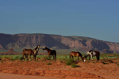 Wild Horses In Monument Valley Poster by Raul Touzon