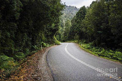 Winding Road Through Lush Green Tasmanian Forests Poster by Jorgo Photography - Wall Art Gallery