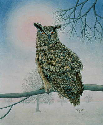 Winter Owl Poster by Ditz