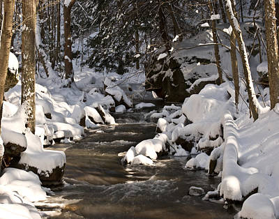 Poster featuring the photograph Winter Stream Win 67 by G L Sarti