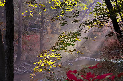 Wissahickon Autumn Poster by Bill Cannon