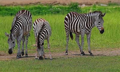 Zebra Family Poster by Dan Sproul