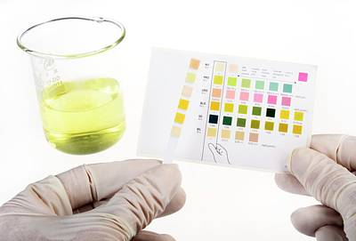 Home Urine Test Poster