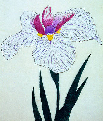 Japanese Flower Poster by Japanese School