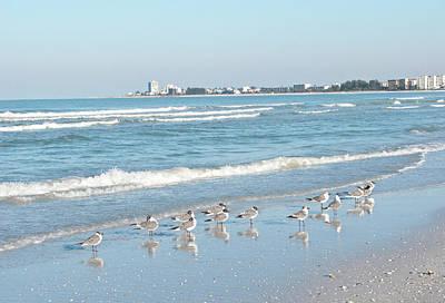 Usa, Florida, Sarasota, Crescent Beach Poster by Bernard Friel