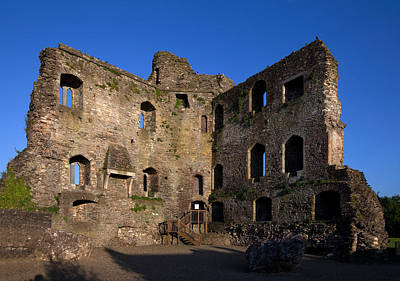 13th Century Castle , Ferns, County Poster by Panoramic Images