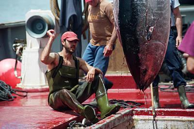 Almadraba Tuna Fishing Poster by Louise Murray