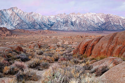 Usa, California, Lone Pine Poster by Jaynes Gallery