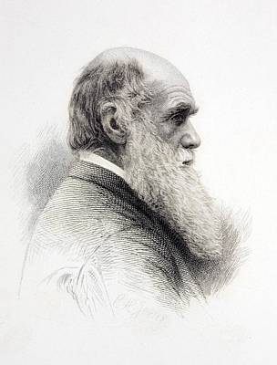 1874 Charles Darwin Fine Engraving Jeens Poster