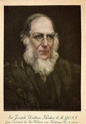 1889 Joseph Hooker Botanist Kew Darwin Poster by Paul D Stewart