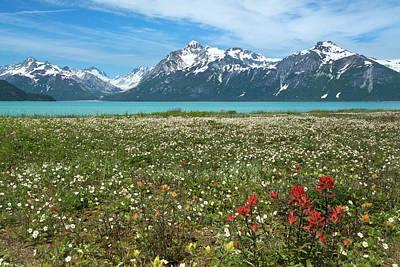 Usa, Alaska, Glacier Bay National Park Poster by Jaynes Gallery