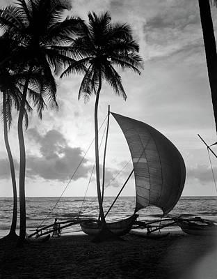 1930s Single Catamaran On Tropical Poster