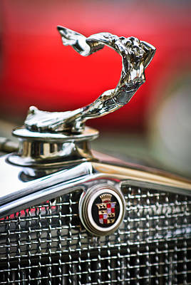 1931 Cadillac 355 Hood Ornament Poster by Jill Reger