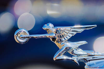 Poster featuring the photograph 1932 Packard 12 Convertible Victoria Hood Ornament -0251c by Jill Reger