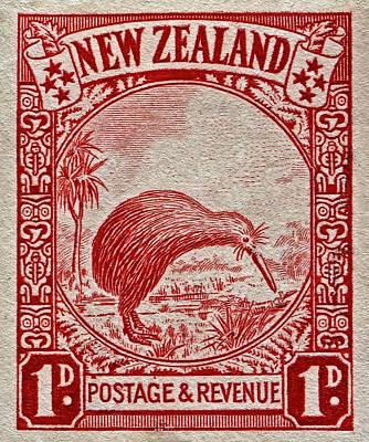 1936 New Zealand Kiwi Stamp Poster