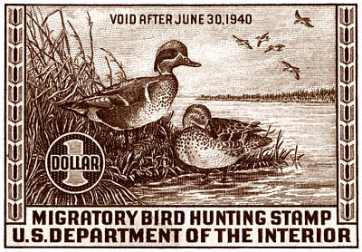 1939 American Bird Hunting Stamp Poster by Historic Image