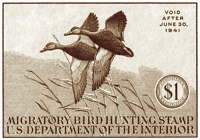1940 American Bird Hunting Stamp Poster by Historic Image