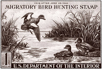 1942 American Bird Hunting Stamp Poster