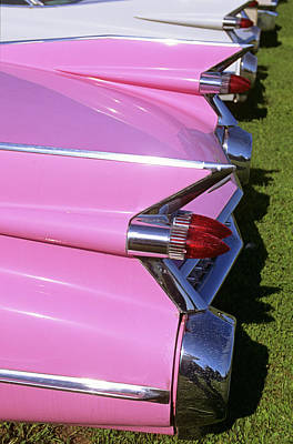 1950s 1960s Close-up Of Fins On Pink Poster