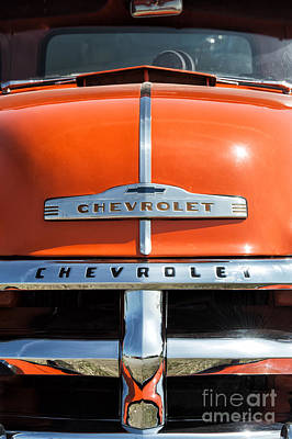 1954 Chevrolet 3100 Pickup Poster by Tim Gainey