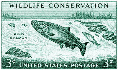 1956 Wildlife Conservation Stamp Poster by Historic Image
