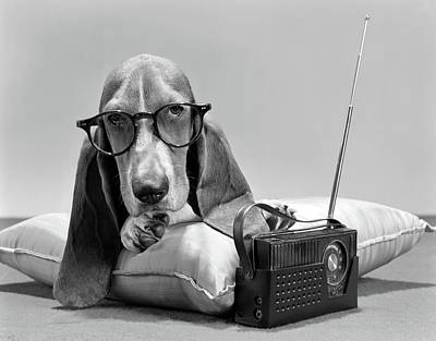 1960s Basset Hound Character Wearing Poster
