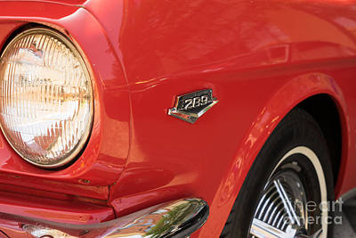 1965 Ford Mustang Dsc1388 Poster