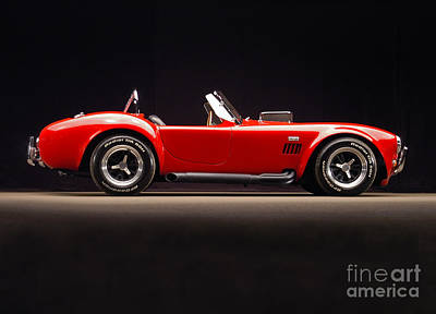 1965 Shelby Cobra 427 Poster by Howard Koby